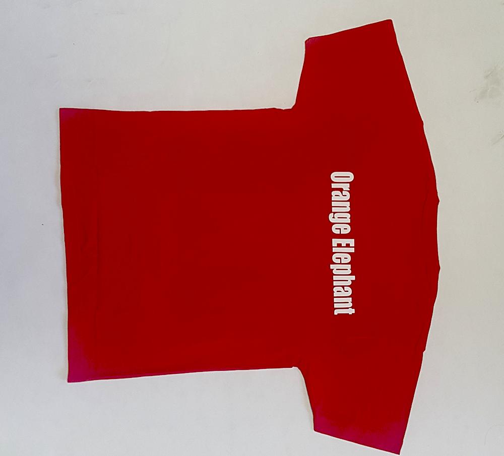 Срочная печать на футболках в Москве за 790 рублей на PrintStudioSharp.ru
